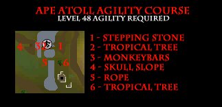 Ape Atoll Agility Course